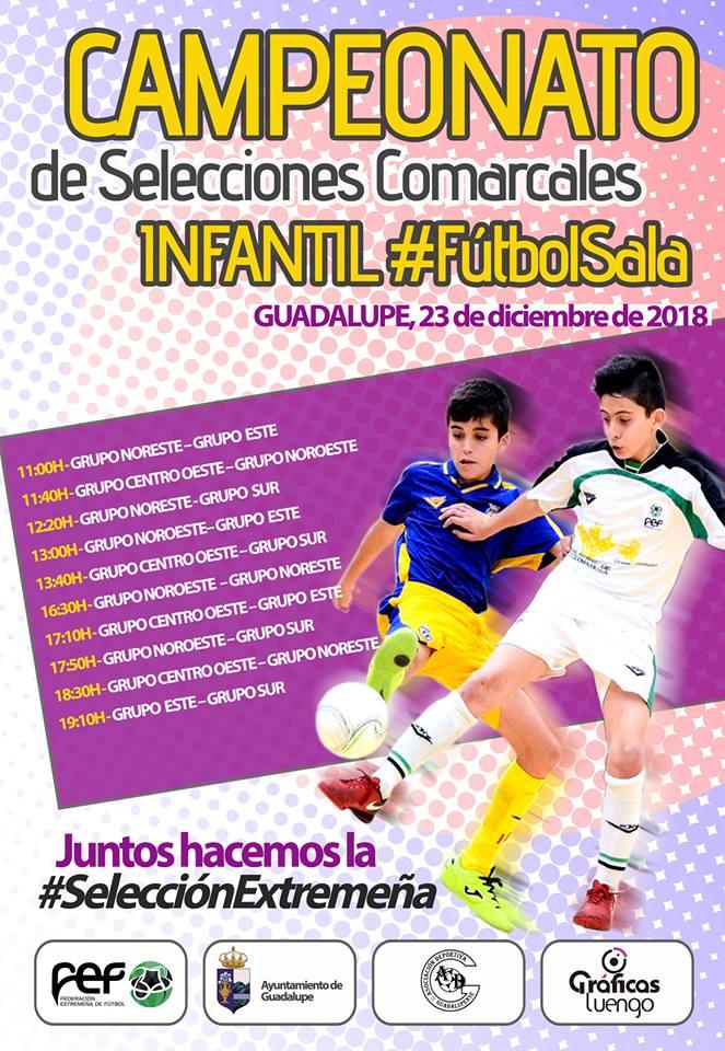 Campeonato de Selecciones Comarcales de Futbol Sala Infantil 2018